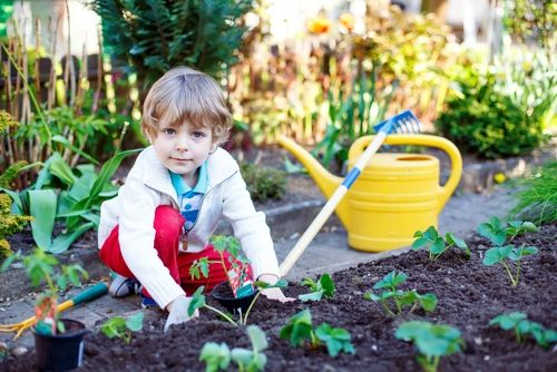National Children's Gardening Week