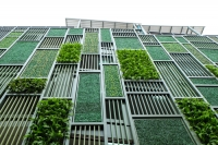 Green walls and roof gardens play a far greater part in improving city living