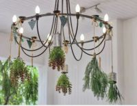 How to make a chandelier hanging planter