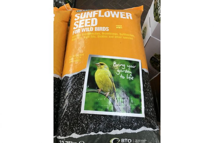 Sunflower Seeds for Wild Birds